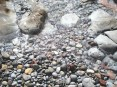 Look among the wet pebbles