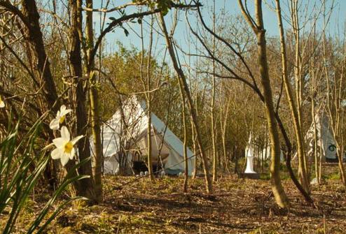 9Plush-Tents-Hampshire