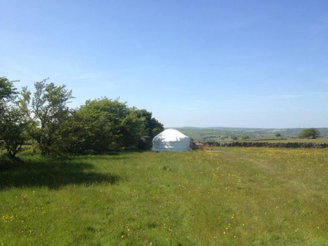 yurt field