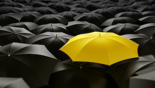 Get free uk umbrella company services