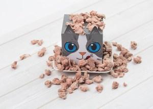 UKIUKI_cat_food_duck (1)