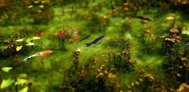 根道神社・モネ(シモネ)の池 ~絵画的美しさの透き通る池~
