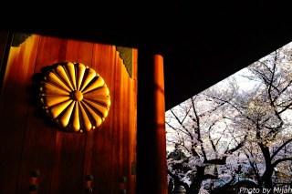 靖国神社・桜04