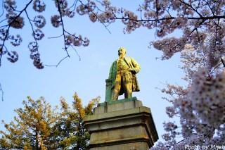 靖国神社・桜12