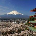 新倉富士浅間神社 ~日本一の富士の眺めと桜~
