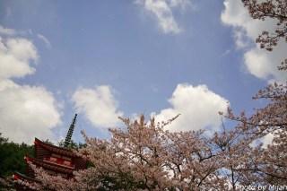 新倉富士浅間神社13