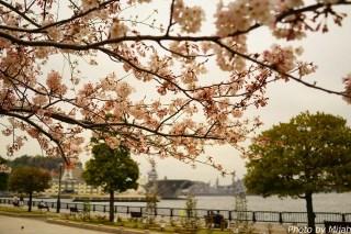 横須賀軍港16