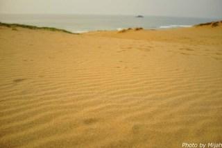 鳥取砂丘24