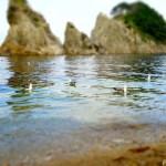 浄土ヶ浜 ~三陸海岸を代表する極楽浄土のような景勝地~