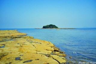 ainoshima-neko26