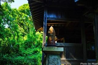 umashima-neko22