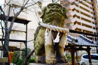 sotetsuyama24