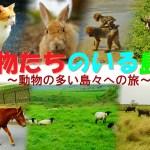 動物たちのいる島へ ~国内9種・15島超もの動物島への旅~