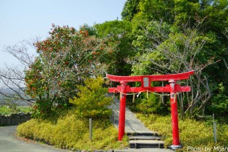 shikokutabi-day4-22