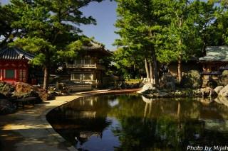shikokutabi-day2-27