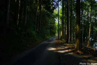 shikokutabi-day2-39