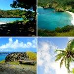 国内最遠の楽園、小笠原諸島への旅 ~7. 父島最後の山と海へ、出向前のカフェ巡り(5日目)~