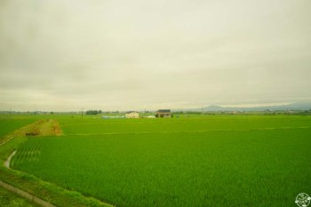 dououseibu-syuyu-day3-13