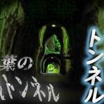 千葉の秘境トンネル『二階建てトンネル』 ~ノスタルジックな列車とレンタサイクルで周遊する~