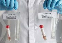 coronavirus and human role in its spread