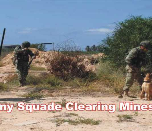 army squad clearing mines