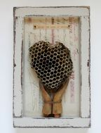 boxed sculpture with hands and wasp nest