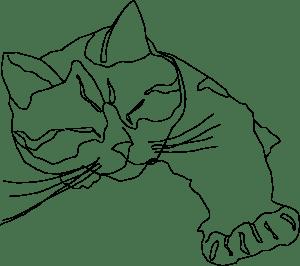 cat contour sketch 2