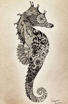 zentangle seahorse