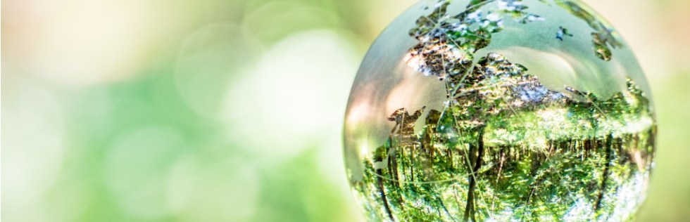 A Level Environmental Science course - AQA UK Open College