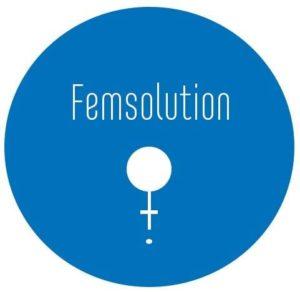 FemSolution
