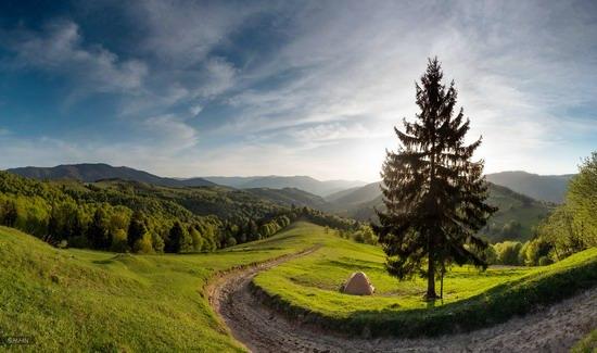 La La Land Wallpaper Quotes Hd Spring In The Carpathian Mountains 183 Ukraine Travel Blog