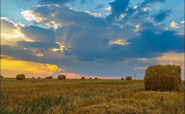 One Hot Summer Day Near Berdyansk Ukraine Travel Blog