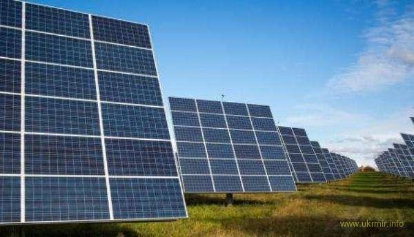 В американском городе испугались, что солнечные батареи убьют всё живое