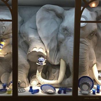 О слоне и посудной лавке