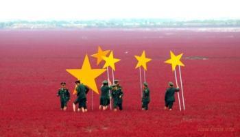 На Дальнем Востоке бунт, Япония готовится его аннексировать