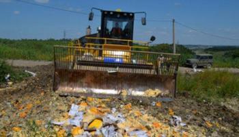 Очень кушать хочется — в России заявили о готовности прекратить уничтожение еды с Запада
