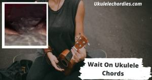 Read more about the article Wait On Ukulele Chords By Hayley Williams