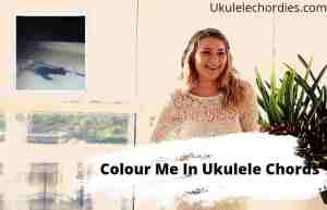 Colour Me In Ukulele Chords By Hayley Williams