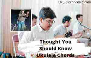 Read more about the article Thought You Should Know Ukulele Chords By Morgan Wallen