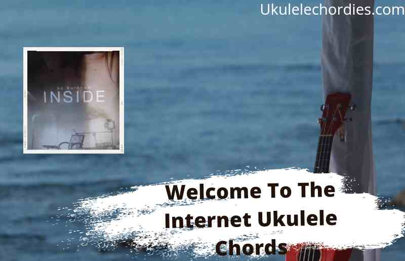 Read more about the article Welcome To The Internet Ukulele Chords By Bo Burnham