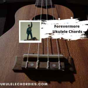 Read more about the article Forevermore Ukulele Chords by ROLE MODEL