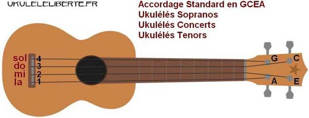 comment accorder son ukulele soprano concert tenor