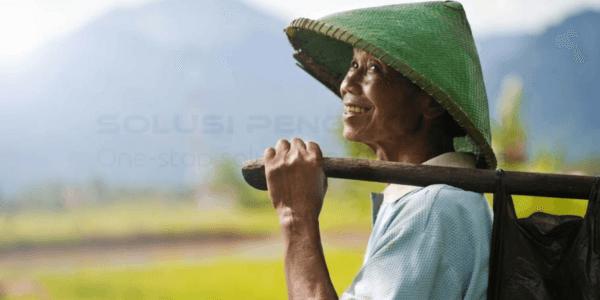 Pertanian Organik Solusi Pertanian Modern7