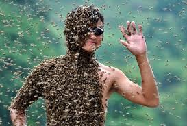 Гидрокортизон при укусе осы
