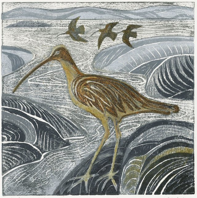 No. 3 Curlews in the Estuary
