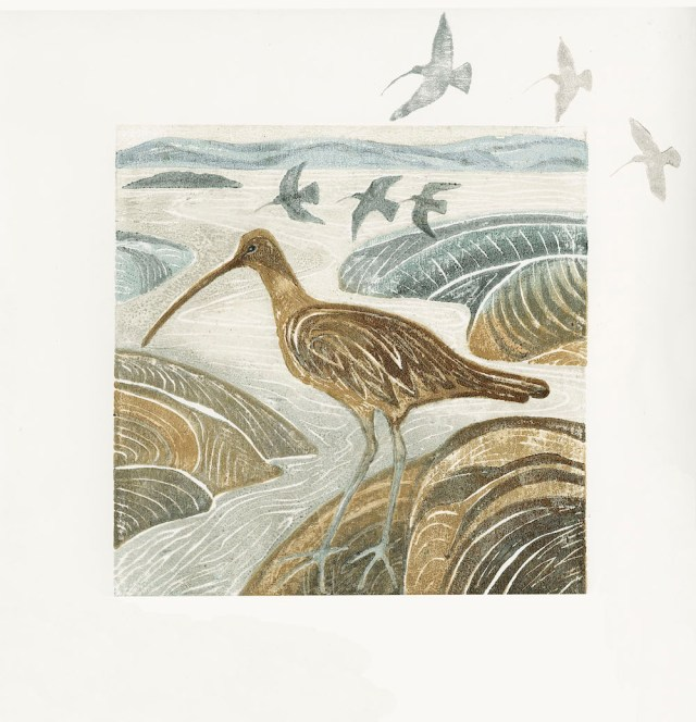 Print 4 from the Curlews series