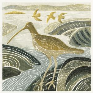 Curlews in the Estuary but for how long in Wildlife Artist of the Year 2021