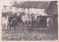 Rahuste küla, Sepa piltidel August Talk ja Helmi Talk