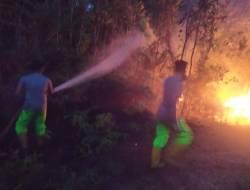 Hutan Bandara Hang Nadim Dilalap Api