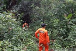 Duh! Seorang Lansia 60 Tahun Hilang di Hutan Konawe